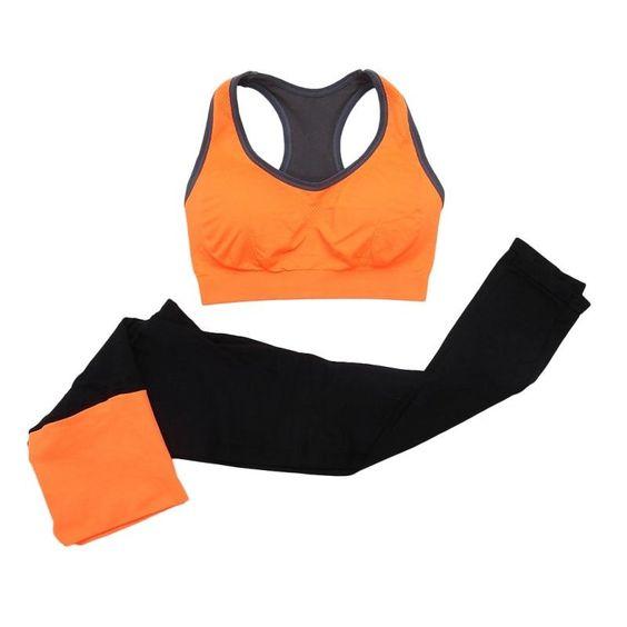 konveksi celana training murah